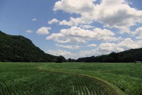 骨寺村荘園遺跡(一関)